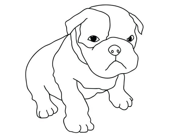 Image Result For Coloring Pictures Of Dogs Cute Pitbull Puppies