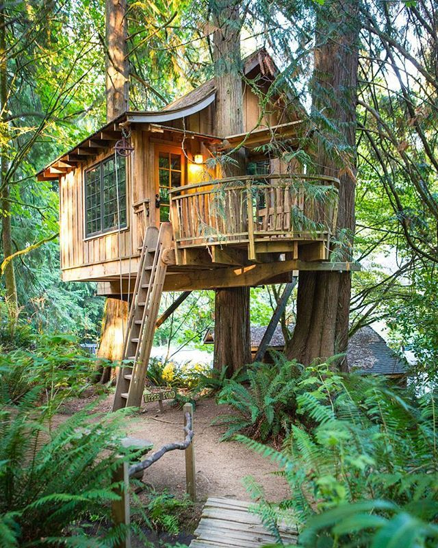 49 Best Treehouse Masters