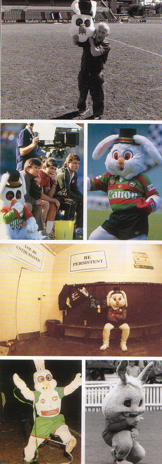 Rabbitohs mascots over the years