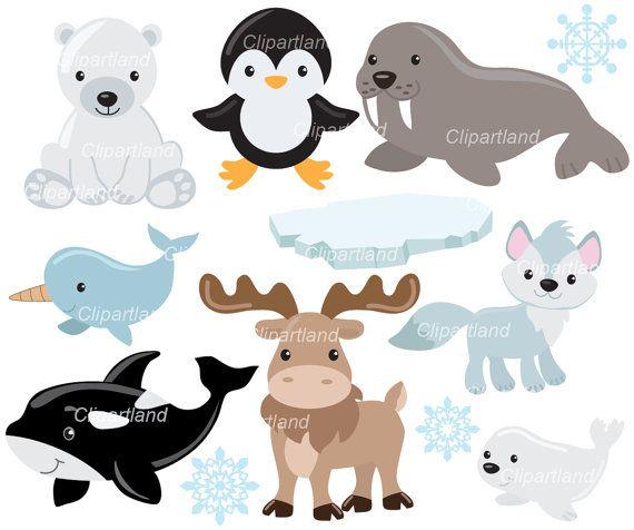 On Sale Instant Download Arctic Animals Clip Art Caa 3 Etsy Animal Clipart Arctic Animals Clip Art
