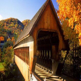 Covered bridge ... Incredible design