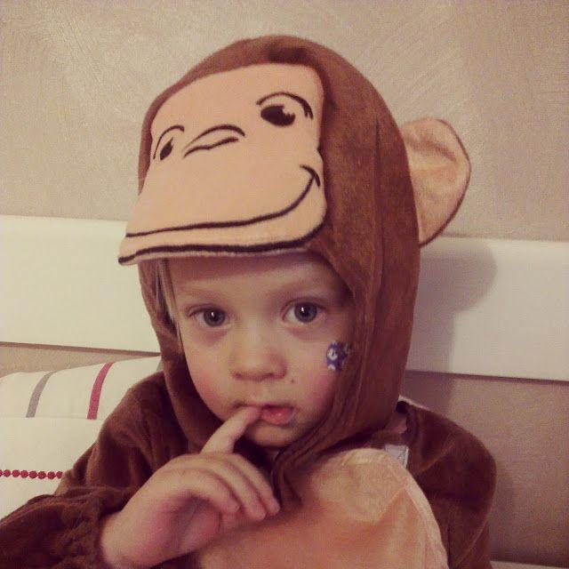 Herra Downin perintöä: Vili apina