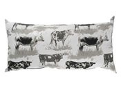 Click here to view more on our NGUNI 50*100