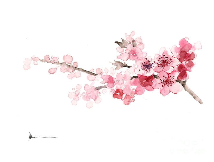 Cherry Blossom Painting Pink Tree Blooming Branch, Watercolor Card Mother's Day…