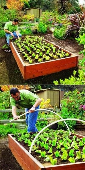 How to construct a garden Raised Bed by fanny