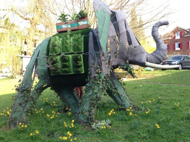 How to Build a Topiary Elephant