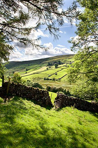 Swaledale between Keld and Angram Yorkshire Dales England- Part of obstacle course with additions to cause problems for player.