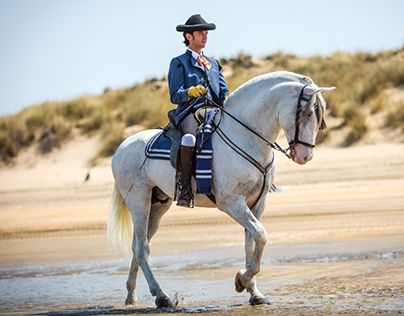 """Check out new work on my @Behance portfolio: """"Andalusian Horses at Doñana"""" http://on.be.net/1EOUu5z"""