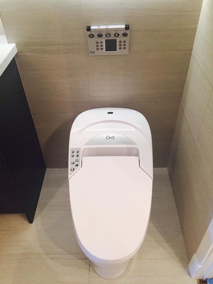 Remote controlled toilet.