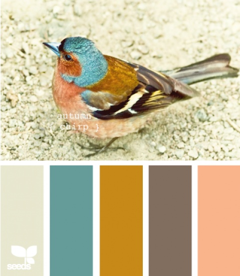 I absolutely love this colour design. Kleur pallet Design-Seeds Autumn Chip Door xxoipp01