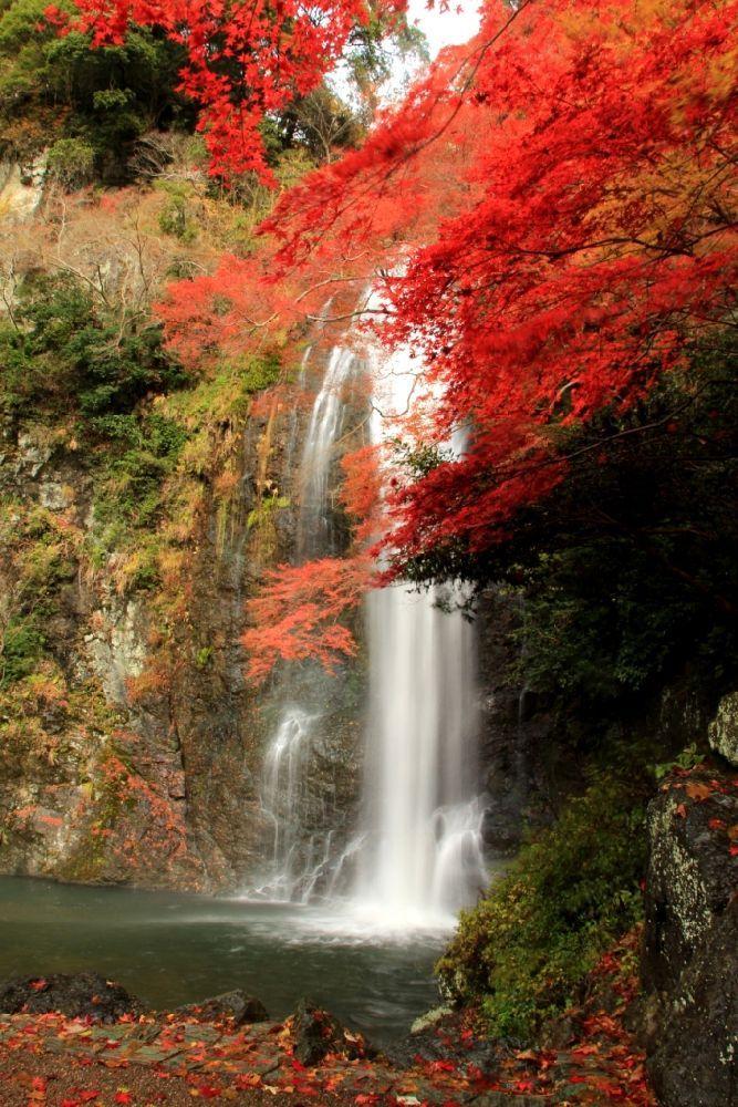 Japan,Osaka 箕面の滝と紅葉