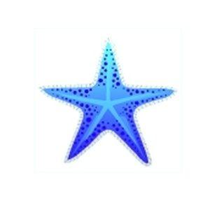 Blue Maritime Starfish