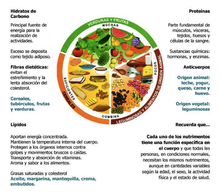 Tip Plato Del Bien Comer Y Pirámide Nutricional Plato Del Bien Comer Plato Del Buen Comer Piramide Nutricional