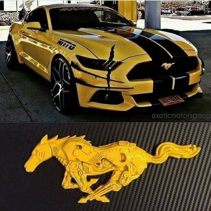 Pin By Quan Trần On Xe With Images Mustang Cars Best Luxury
