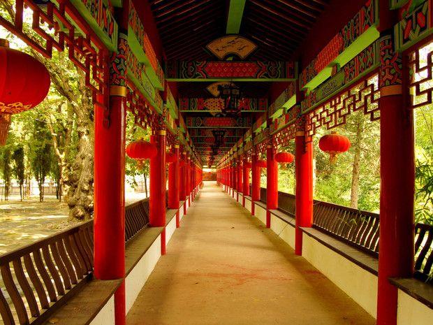 En général, les visiteurs qui se rendent à Kunming, la capitale de la province du Yunnan, poétiquement surnommée la « cité du printemps éternel », y vont surtout pour découvrir l'impressionnante « Stone Forest » dont les rochers karstiques dressent leurs formes acérées au milieu de la végétation. Mais il ne faut pas rater non plus le temple des Bambous (en photo), situé à 10 km au NE de Kunming. Ce lieu très coloré abrite une petite communauté de moines bouddhistes.