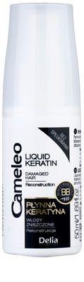 Delia Cosmetics Cameleo BB Keratină lichidă spray pentru par deteriorat