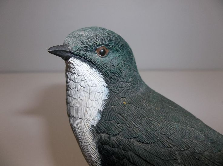 palmer bird The latest tweets and replies from larry bird (@palmer_bird) 52% england, united kingdom.