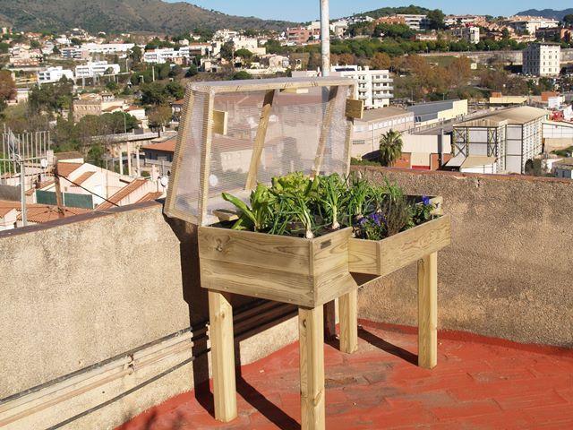 C mo hacer un invernadero casero para huerto urbano - Invernadero en terraza ...