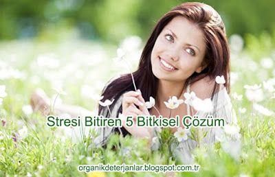 Organik Deterjan: Stresi Bitiren 5 Bitkisel Çözüm