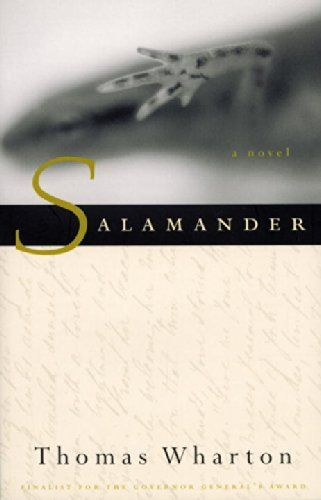 Salamander by Thomas Wharton ... reads well with... Clockwork by Philip Pullman #readswellwith #NovemberReads