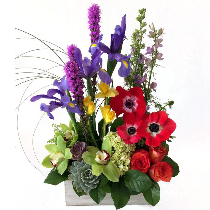 A Box Of Spring From Cactus Flower Florists Cactus Flower Order Flowers Online Flower Store