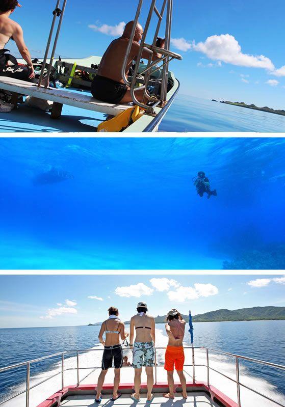 石垣島ダイビングショップ 石垣島ダイビングサービスマリンメイト ダイビングエリアは石垣島北部とマンタ