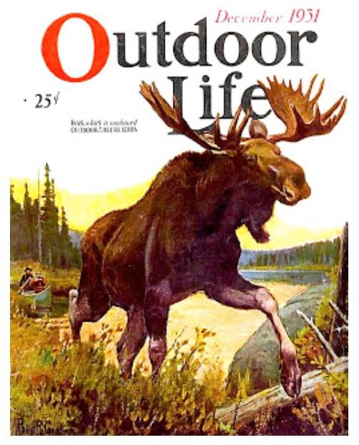 Image result for moose vintage sporting art