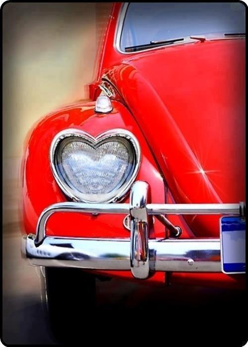 Buona serata a domani ♥    Bug Love
