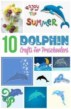 10 Fun Dolphin Crafts For Preschoolers: Here, Momjunction has compiled a list of some amazing dolphin crafts for preschoolers. So, get your little one busy with these fun crafts.