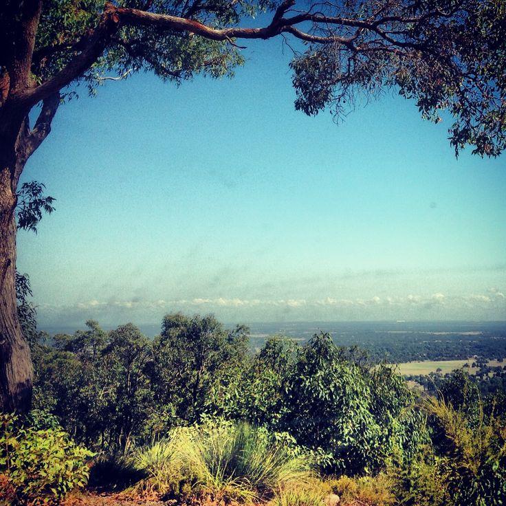Overlooking Serpentine