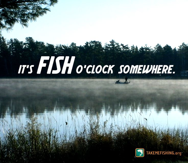 35 best images about fishing sayings and puns on pinterest for What is the best time to go fishing