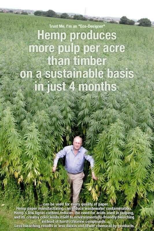 Hemp paper | hemp CBD | Cannabis, Hemp, Weed
