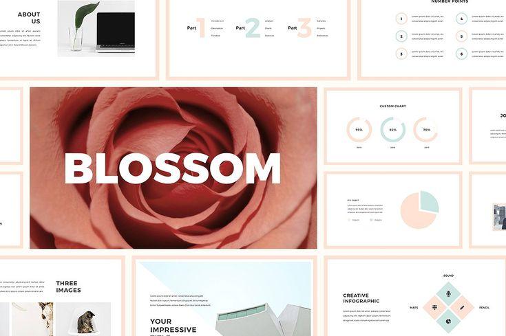 Colossal Presentation Bundle by SlideStation on @creativemarket