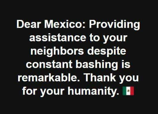 Sì, gracias, porque a menudo son mejores vecinos de lo que merecemos.