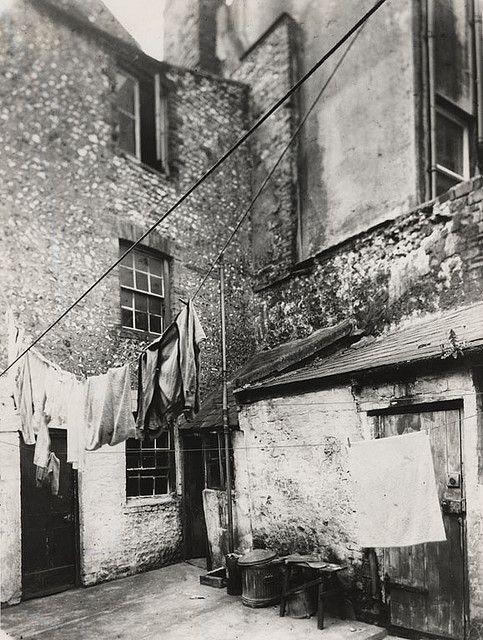 Backyard in Edward Street, Brighton | Flickr - Photo Sharing!