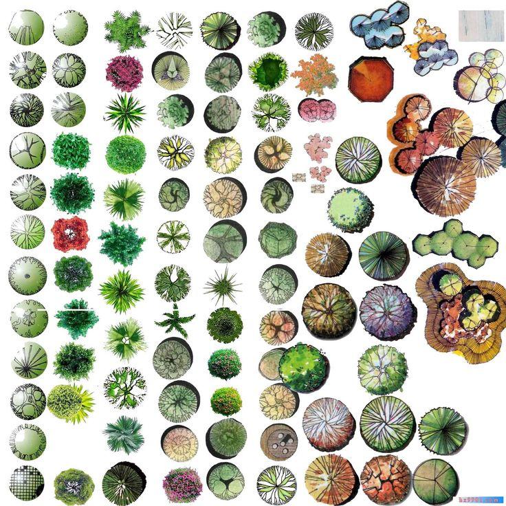 TREE+PSD+07.jpg 1,600×1,600 ピクセル