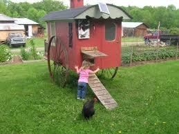 113 Best Images About Chicken Coop Door On Pinterest