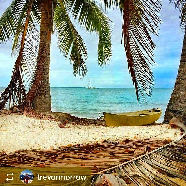 #Follow @trevormorrow: From #Hopkins #Belize a rural fishing village on the central coast - #ILoveBelize #Travel #beautiful #beach #paradise #nature #sea #vacation #Romantic