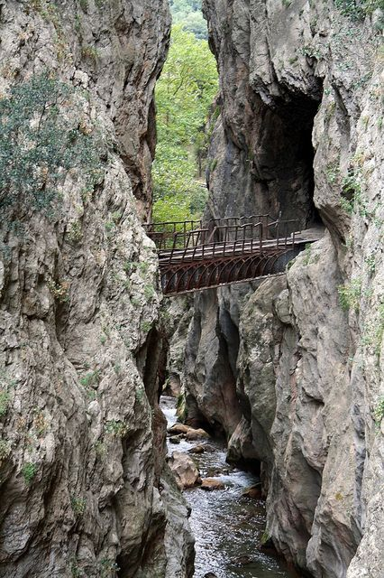 Vouraikos gorge, a sheer beauty of Achaia (near the picturesque and historic town of Kalavrita in Northern Peloponnese) is visitable with a little help from Odontotos rack railway