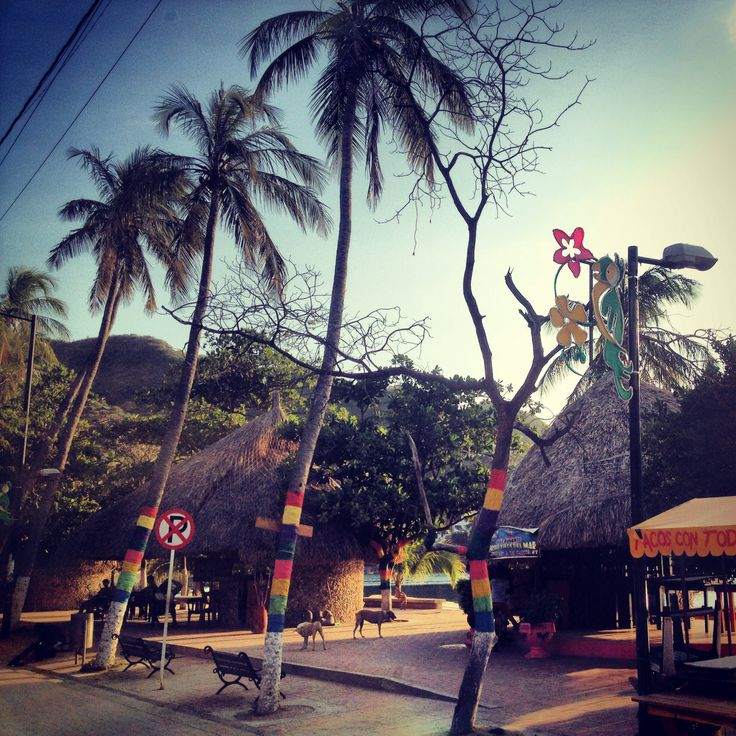 Boulevard with colored trees in Taganga - Colombia