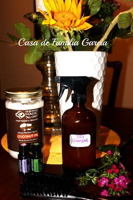 Casa de Familia Garcia: DIY Hair Detangler or Leave in Conditioner