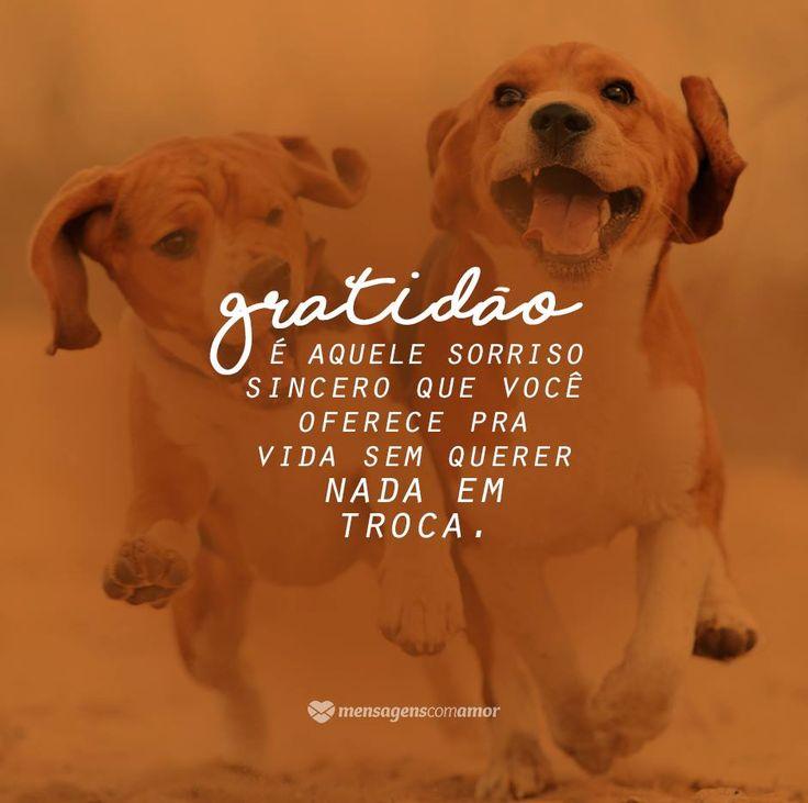 Gratidão é aquele sorriso sincero que você oferece pra vida sem querer nada em troca. #mensagenscomamor #agradecimentos #pensamentos #frases