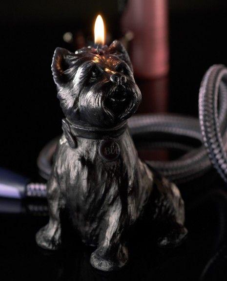 Bougies la Française - Bougie décorative chien noir Chester.