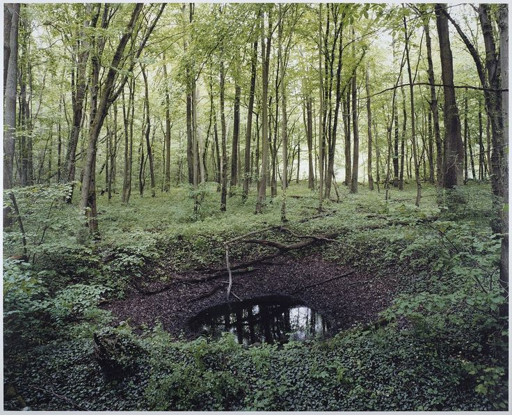 WWII bomb craters on German countryside