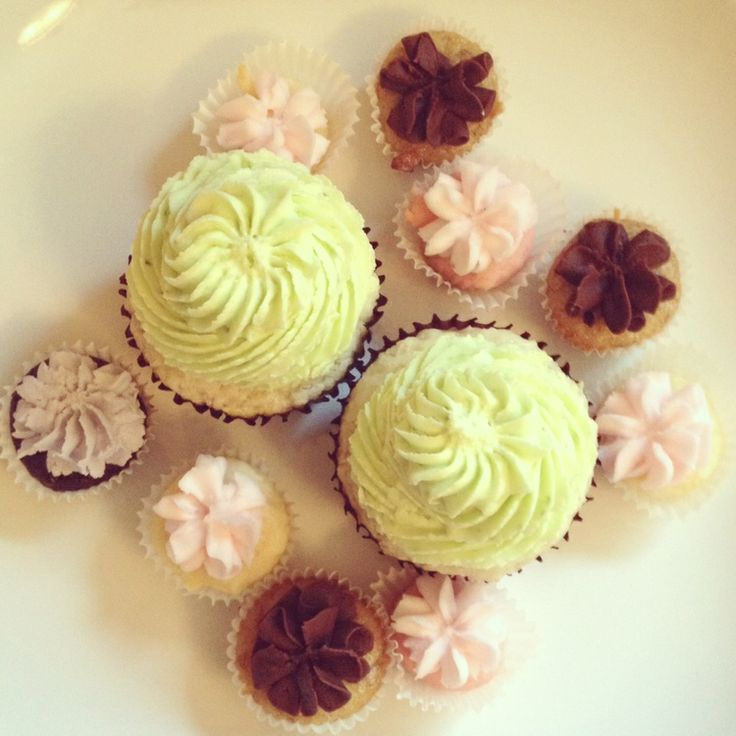 Fairly Frosted Cupcakes .. Market Goodness