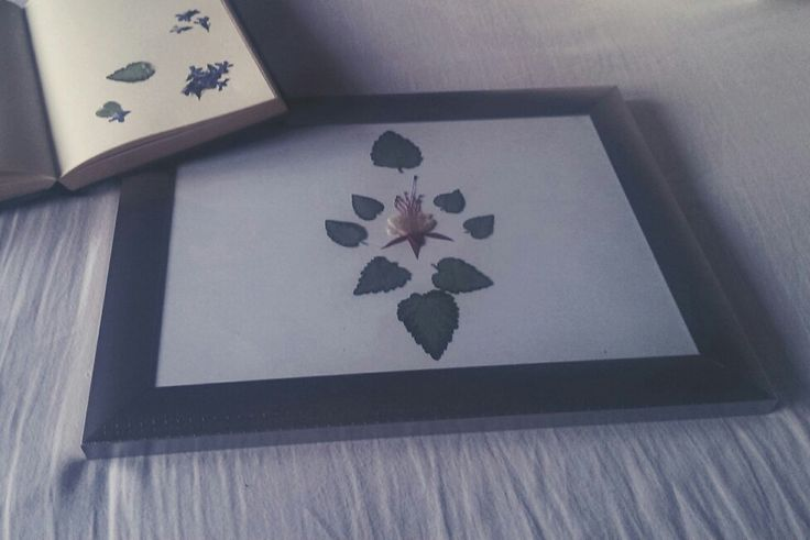 Pressed flower art is something that's been keeping my interest lately.