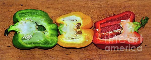 #Peppers in a #Row by #Kaye_Menner #Photography Quality Prints Cards Products at: http://kaye-menner.pixels.com/featured/peppers-in-a-row-by-kaye-menner-kaye-menner.html