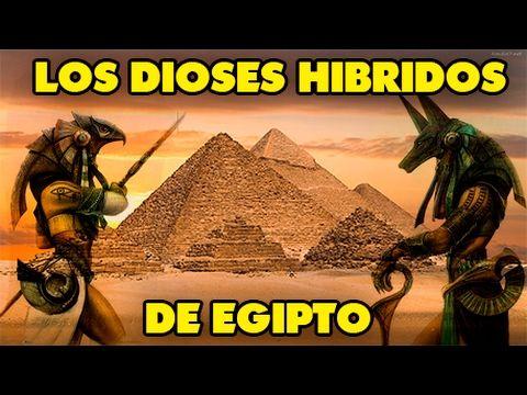 ¡¡¡DESCUBRE!!! Porque los DIOSES EGIPCIOS eran mitad HOMBRE mitad ANIMAL (HÍBRIDOS)  (11:11) 2017 - YouTube