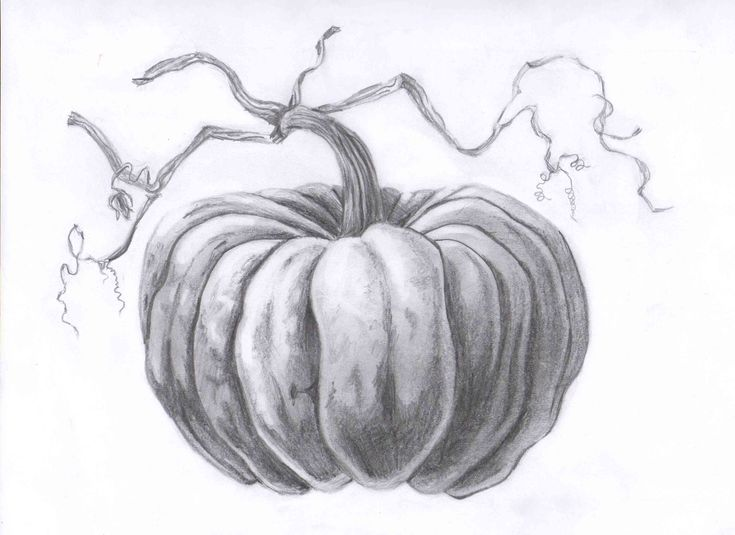 25 best ideas about pumpkin drawing on pinterest fall for Awesome pumpkin drawings