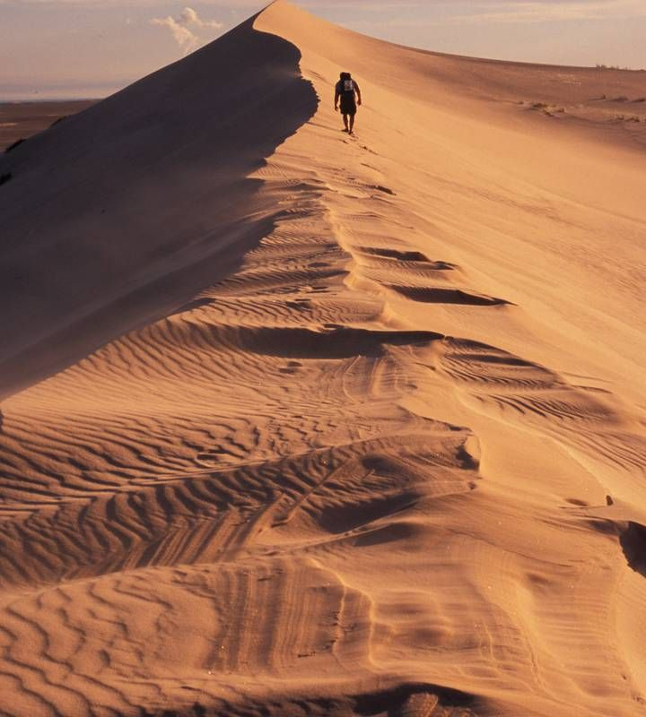 Athabasca Sand Dunes Provincial Wilderness Park. Photo used by permission from Tourism Saskatchewan.